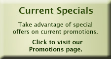 Special offers and promotions from Sourcelight Photography